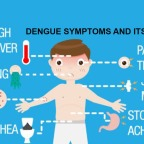 DENGUE : HOW TO PREVENT FROM IT?
